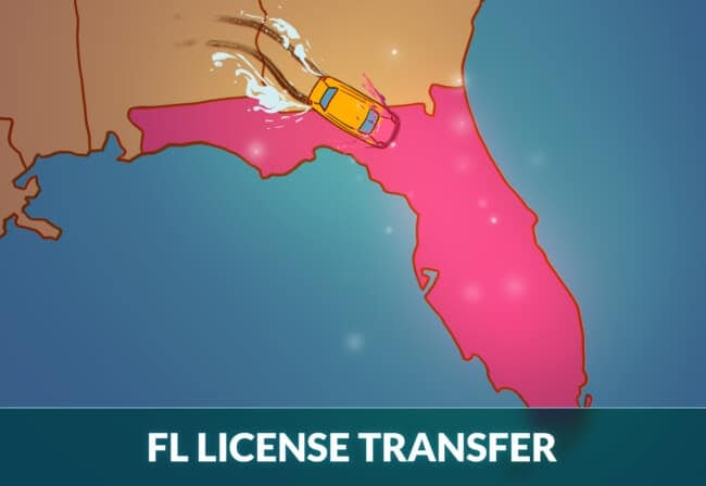 Transfer driver's license to Florida
