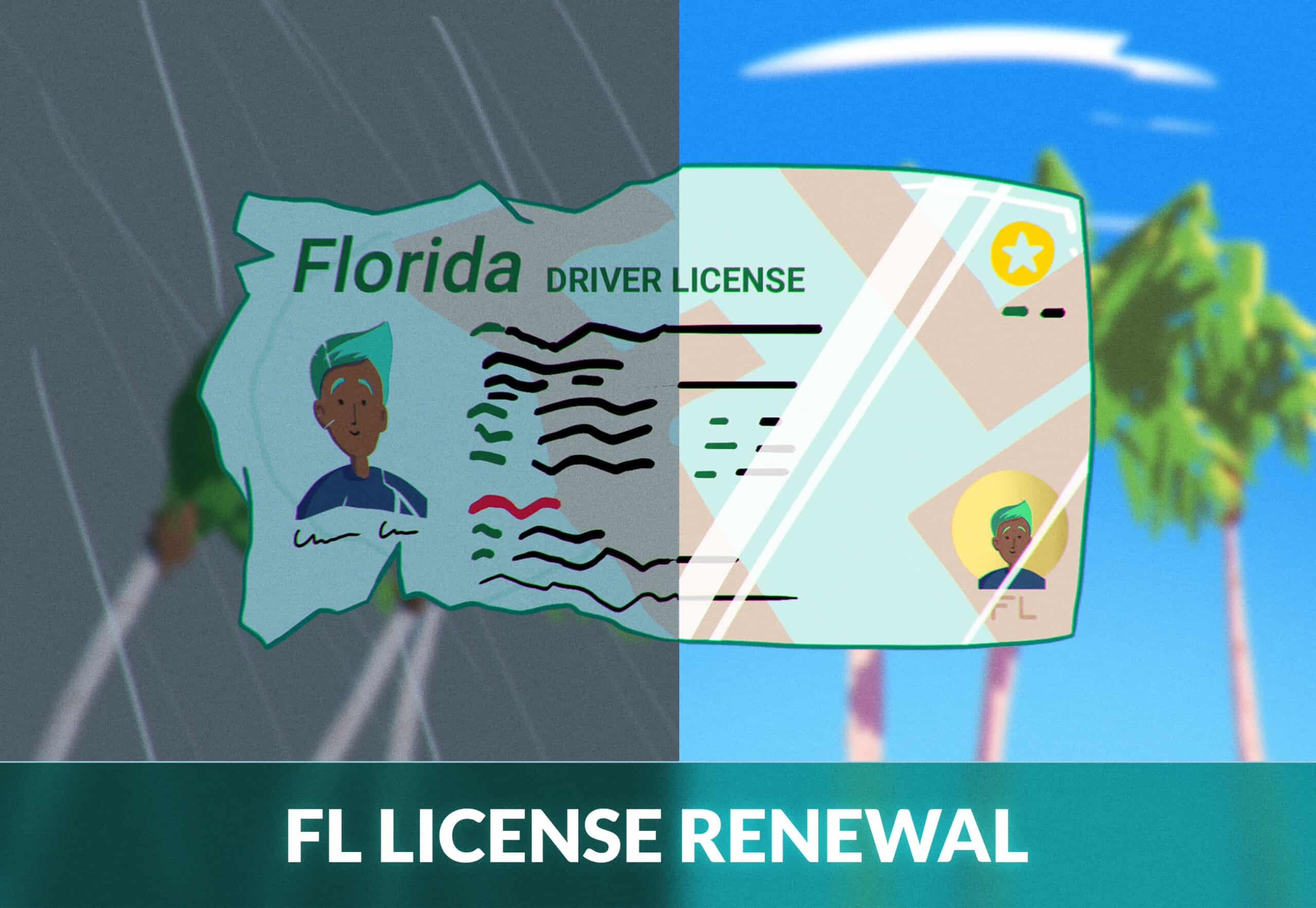 Florida driver's license renewal