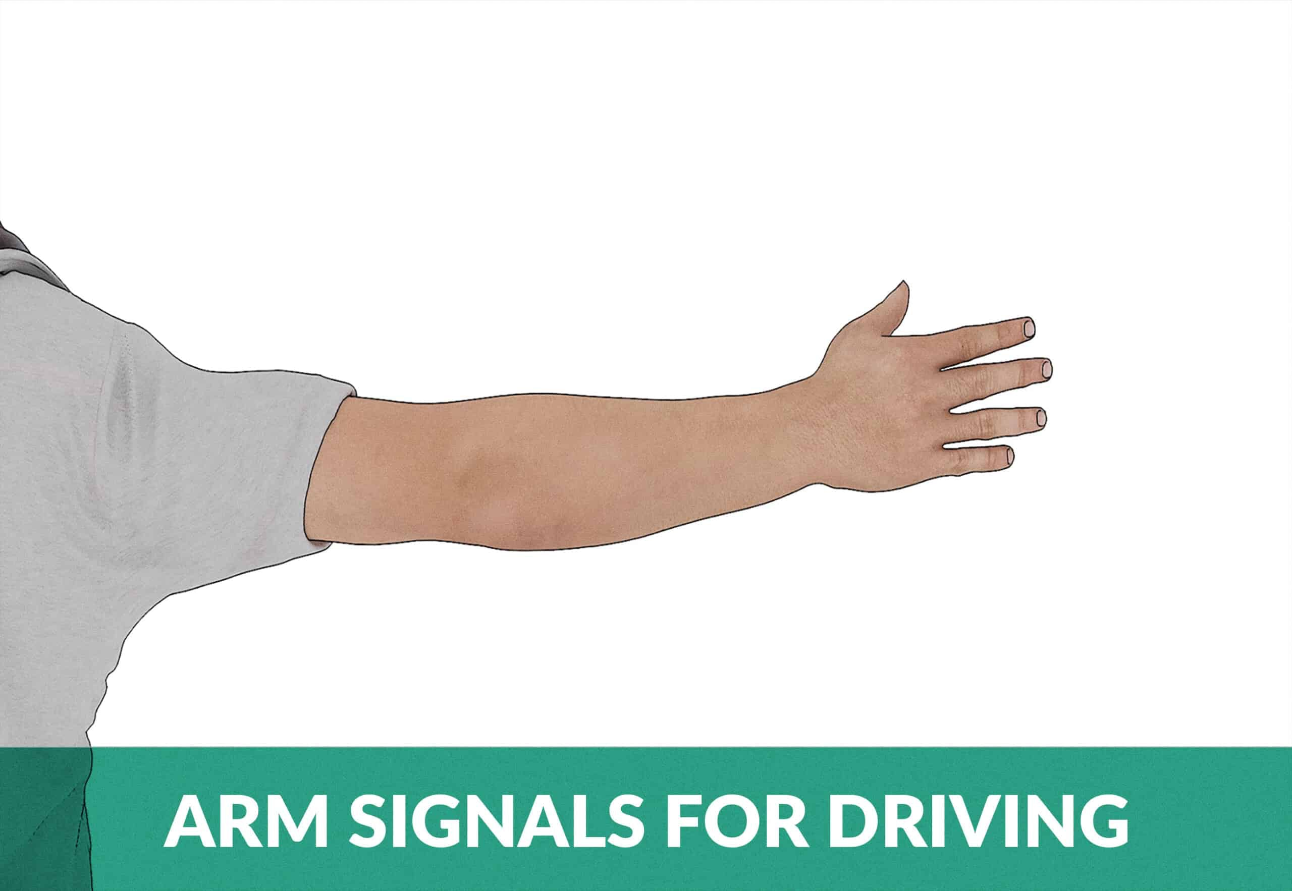 arm signals for driving