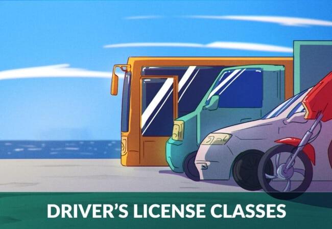 Driver's License Classes in Australia